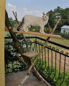 zabezpieczony balkon 3