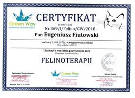 Felinoterapeuta